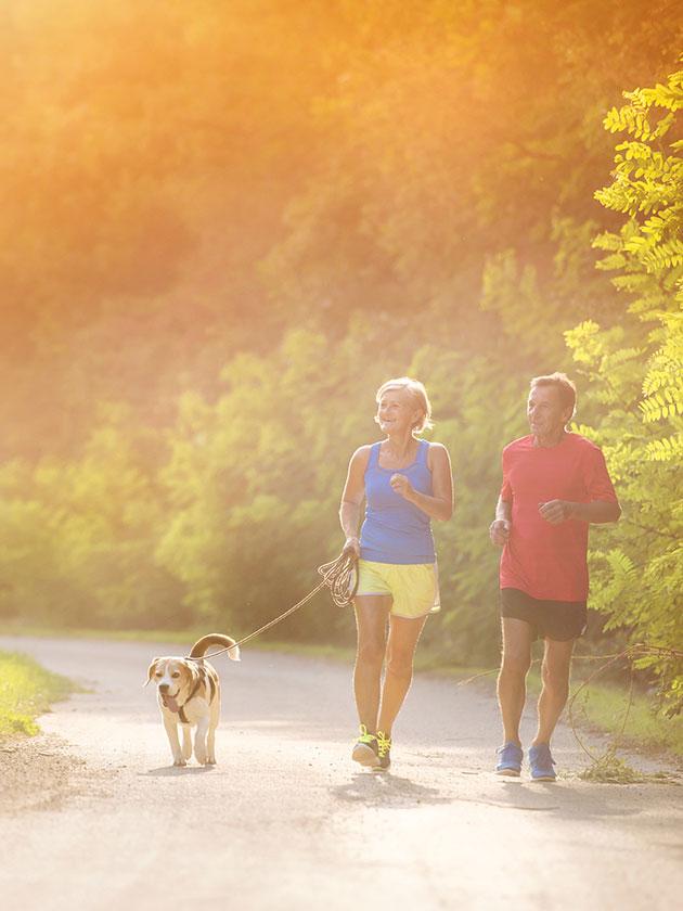 Stoffwechsel im Griff: So steigern Sie Ihren Energieverbrauch